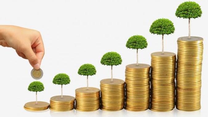 BOLT Penjualan Merosot 36%, BOLT Rugi Rp7,8 Miliar Di Kuartal II 2020